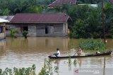 Pemkab Kampar akan bantu translokasi warga dari daerah banjir, begini syaratnya