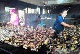 Bahan baku lele asap di Agam didatangkan dari Riau