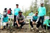 Penanaman mangrove penting dilakukan di kawasan pesisir Seruyan