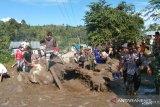 Kapolda Sulteng-Danrem turun bantu korban banjir bandang di Kulawi