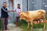 Padang Panjang beri bantuan bibit ternak pada warga agar lepas dari kemiskinan