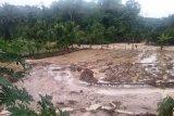 Sembilan rumah hanyut dan roboh akibat banjir yang melanda Solok Selatan