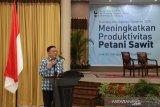 Kanwil Pajak Riau garap sumber penerimaan dari sawit