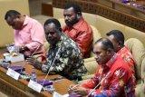 Perjuangkan pembentukan Papua Selatan