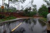 Hari ini, BMKG: Banjarnegara hujan lebat