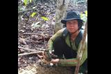 Seorang warga perbatasan hilang di hutan rehabilitasi Kalimantan