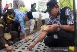 Temanggung sentra pengembangan benih bawang putih Indonesia