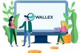 Pakai Wallex, transfer uang lintas negara hanya Rp100 ribu