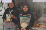 Bulog Pati target gelontorkan 26.556 ton beras operasi pasar