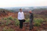 Presiden RI Joko Widodo tinjau lokasi ibu kota baru di kawasan konsesi HPH