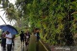Jalan penghubung Kota Gunungsitoli - Nias Selatan tertimbun longsor