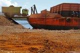 MenJelang pelarangan, Antam prediksi ekspor nikel tahun ini sesuai target