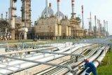 Pengamat : Progres pembangunan kilang minyak Pertamina dinilai cepat
