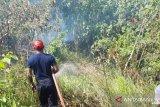 Polisi selidiki penyebab Karhutla di Passo Ambon