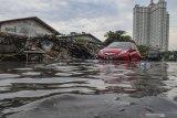 Jepang akan kirim staf ke Indonesia untuk kerja  sama pencegahan banjir