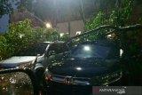 Hujan ekstrem di Palembang menurut BMKG dipengaruhi badai tropis phanfone