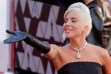 Lady Gaga segera rilis single baru 'Stupid Love'