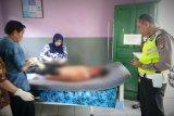 Dua kecelakaan renggut nyawa pengendara motor di Kotim