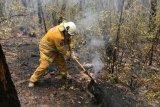 Ribuan penduduk dievakuasi dari kawasan wisata Australia karena kebakaran hutan