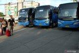 Ini sikap Damri atas insiden perempuan terjepit bus di Bandara Internasional Soekarno-Hatta