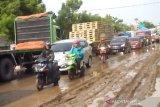 Pemprov Jateng ikut cek kerusakan jalan Pantura