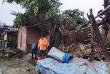 Satu unit rumah di Agam rusak berat akibat tertimpa pohon beringin tumbang