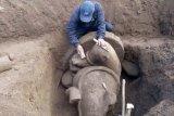 Arca Ganesha ditemukan di Dieng, BPCB segera mengangkatnya