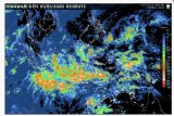Kepala BNPB: Utamakan keselamatan  jiwa saat cuaca ekstrem