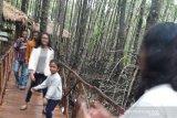 Pemkab Bangka Barat gencarkan promosi wisata, tingkatkan kunjungan wisatawan