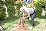 Polresta Bandarlampung tanam pohon dalam rangka penghijauan