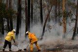 Petugas pemadam kebakaran Australia meninggal ketika bertugas