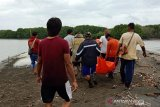 Warga geger temuan mayat tersangkut pohon bakau di Muara Gembong