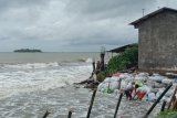 Walhi minta Pemprov Sulsel kaji ulang kebijakan penambangan pasir  laut