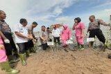 Polres Kotim tanam 1.000 mangrove selamatkan Pantai Ujung Pandaran