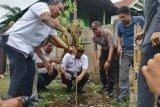 Forkopimda Kota Makassar akan tanam 4.000 pohon