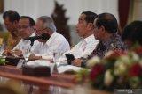Tanaman ini dipilih Jokowi untuk cegah banjir di kawasan hulu