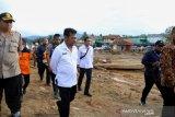 Mentan tinjau lahan pertanian rusak akibat banjir di Lebak