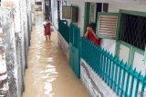 Pakar menyarankan pemerintah perbanyak embung cegah banjir