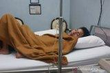 DBD serang Sikka, dua meninggal dan 150 orang lainnya dalam perawatan
