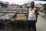 Stok ikan Teri Nasi asin di Pulau Pasaran kosong