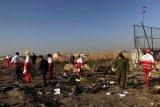 Pesawat Boeing B 737-800 NG Ukrania kemungkinan kena rudal Iran