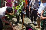 Cegah Bencana, Polda Sultra Gelar Aksi Penanaman Pohon