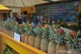 Produk buah unggulan Kabupaten dan Kota di sumsel hiasi Festival Buah