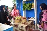 Gubernur minta  masyarakat lestarikan buah lokal