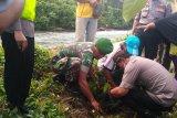 Polres Solok Selatan tanam pohon dukung kelestarian alam