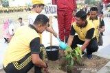 Polda Sulteng tanam puluhan ribu bibit pohon