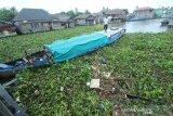 Perahu bermesin terjebak saat melewati sungai Kuin yang tertutup eceng gondok dan sampah yang terbawa arus sungai di Banjarmasin, Kalimantan Selatan, Jumat (10/1/2020). Keberadaan sampah di sungai tersebut mengganggu arus lalu lintas perahu kelotok yang menjadi salah satu moda transportasi warga setempat. Foto Antaranews Kalsel/Bayu Pratama S.
