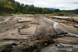 2,75 hektare sawah di Padang Pariaman rusak akibat banjir bandang