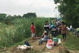Ratusan warga terdampak banjir Demak bertahan di tanggul sungai