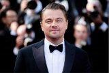Leonardo DiCaprio sumbang 3 juta dolar untuk bantu tangani kebakaran Australia